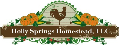 Holly Springs Homestead